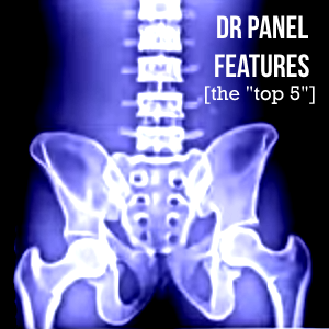 DR_Panel_Features